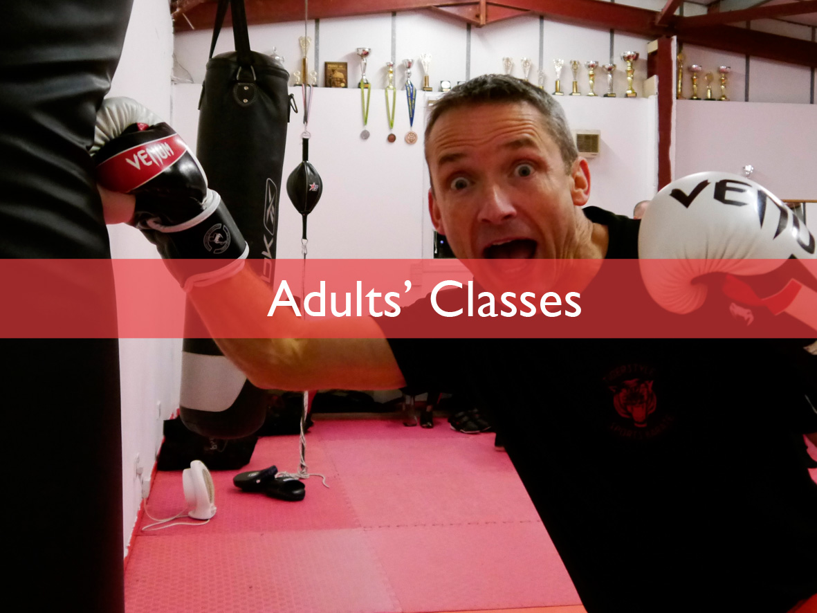 Tigerstyle Sports Karate Adults' Classes