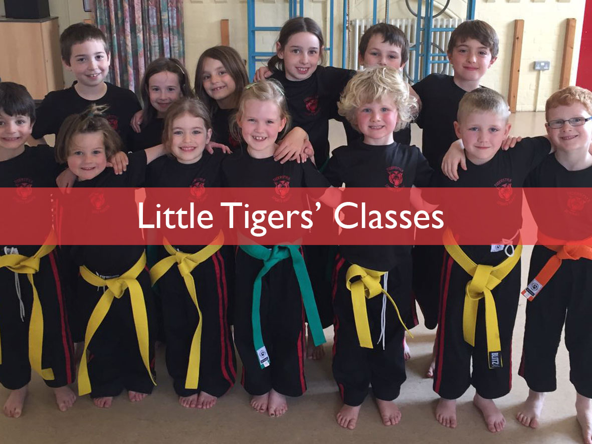Tigerstyle Sports Karate Little Tigers' Classes