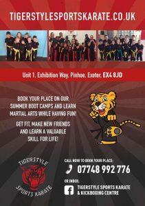 Tigerstyle summer school flyer