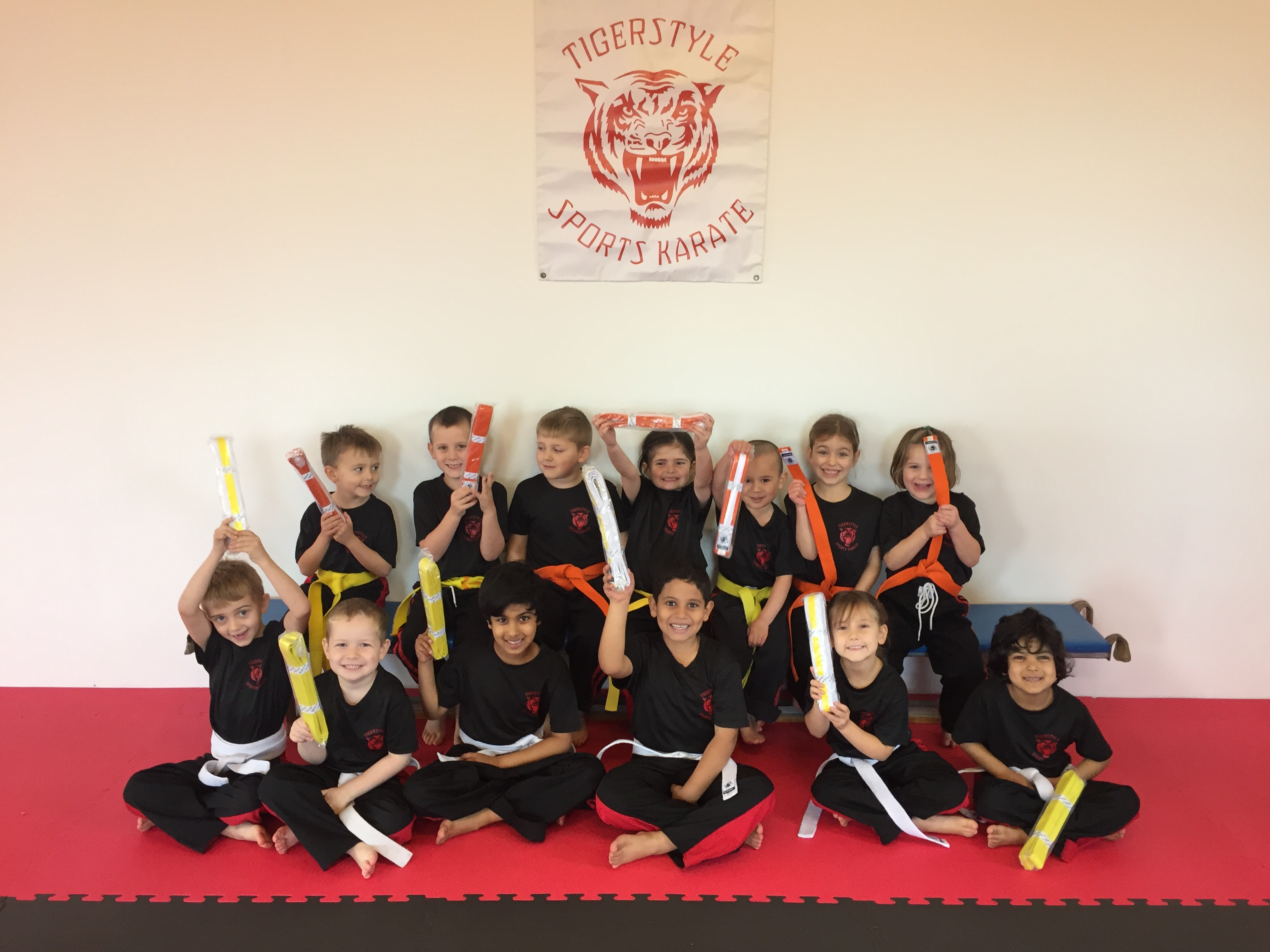 Gradings mixed belt colours