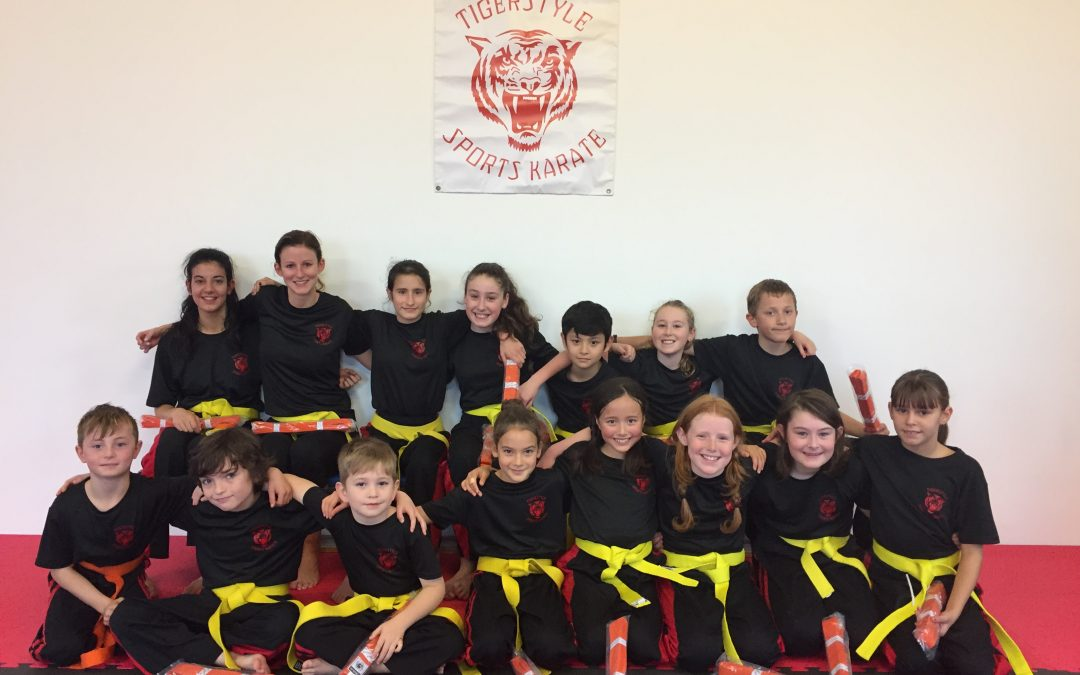 Tigerstyle Gradings – 22nd April