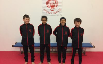 New Tigerstyle Tracksuits