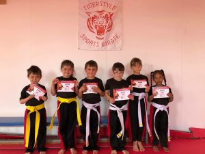 Little tigers grading day