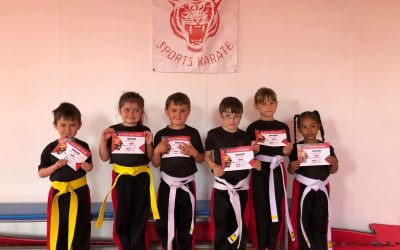 Little Tigers' Grading Day
