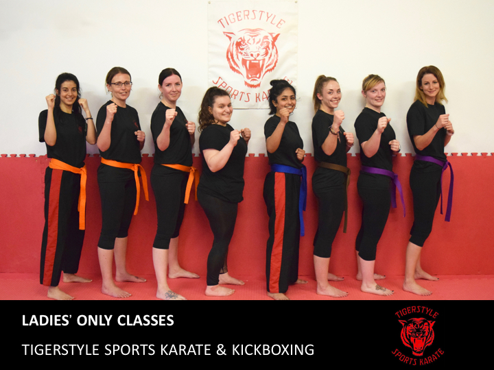 Tigerstyle Sports Karate Ladies' Classes
