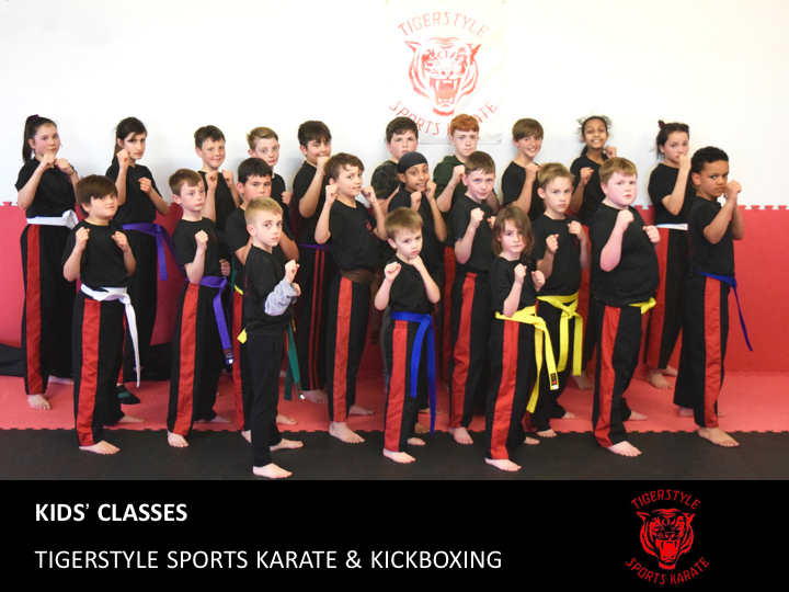 Tigerstyle Sports Karate Kids' Classes