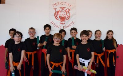 Tigerstyle Gradings July 2019